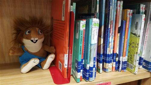 A stuffed animal looks at books.